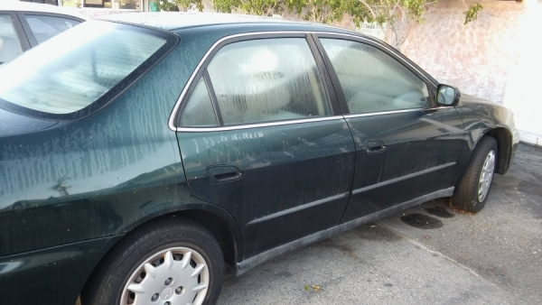 Cheap Cash Cars >> 2000 Honda Accord For Sale in Dana Point, CA - Salvage Cars